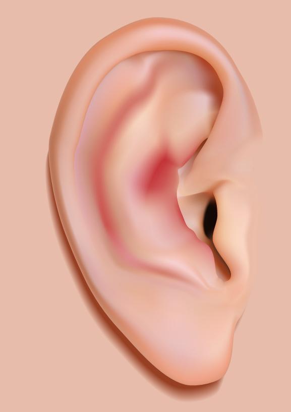 痛い 耳 原因 が